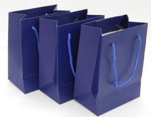 Custom Printed Paper Gift Bags With Handles , Colored Paper Packaging Bags